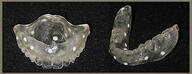Dentures with Radiopaque Markers